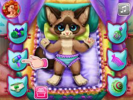 Banho do Gato - screenshot 2